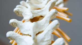 back pain bikestores