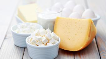 Diana Steele, BSc, RD, discusses What is the Right Amount of Calcium for Good Nutrition?