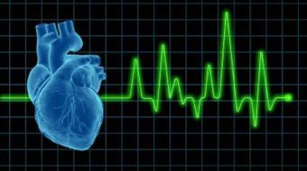 heart stresstest cardiovascular