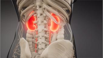 Protecting Kidneys in People with Diabetes