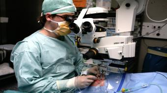 Pars Plana Vitrectomy to Treat Retinal Detachment